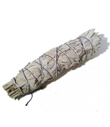 White Sage | Smudge Stick - XL