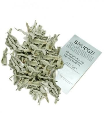 Smudge | White Sage